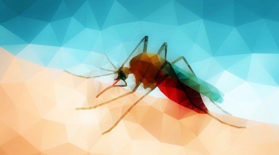 علایم و درمان بیماری مالاریا