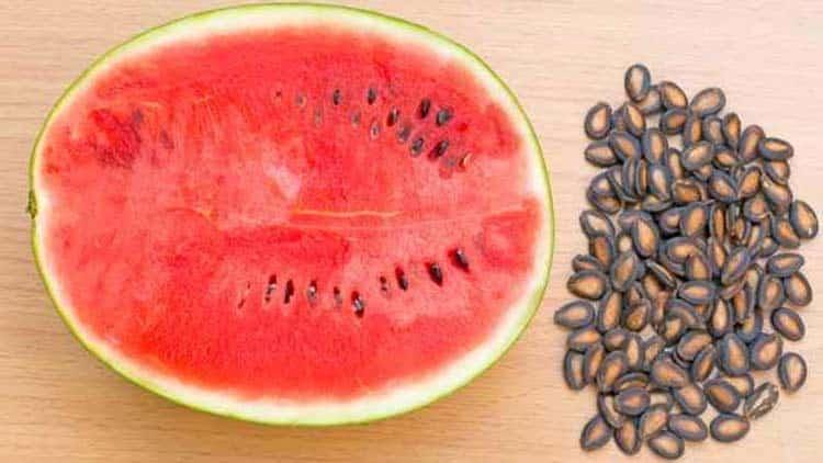 خواص و عوارض تخمه هندوانه