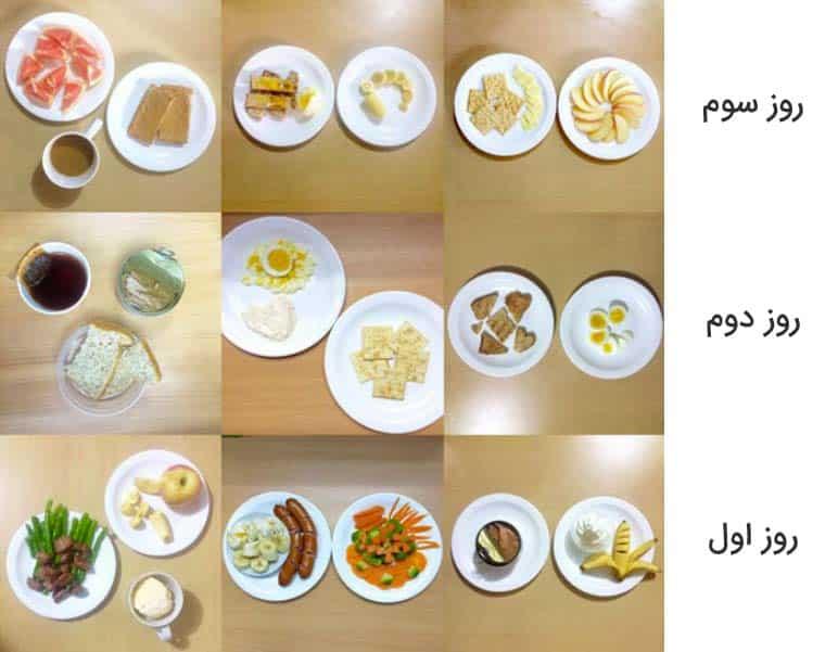 رژیم غذایی ارتشی