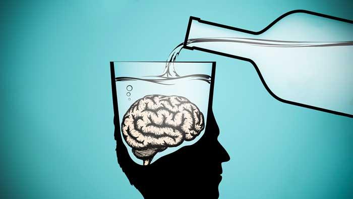 الکل و مغز